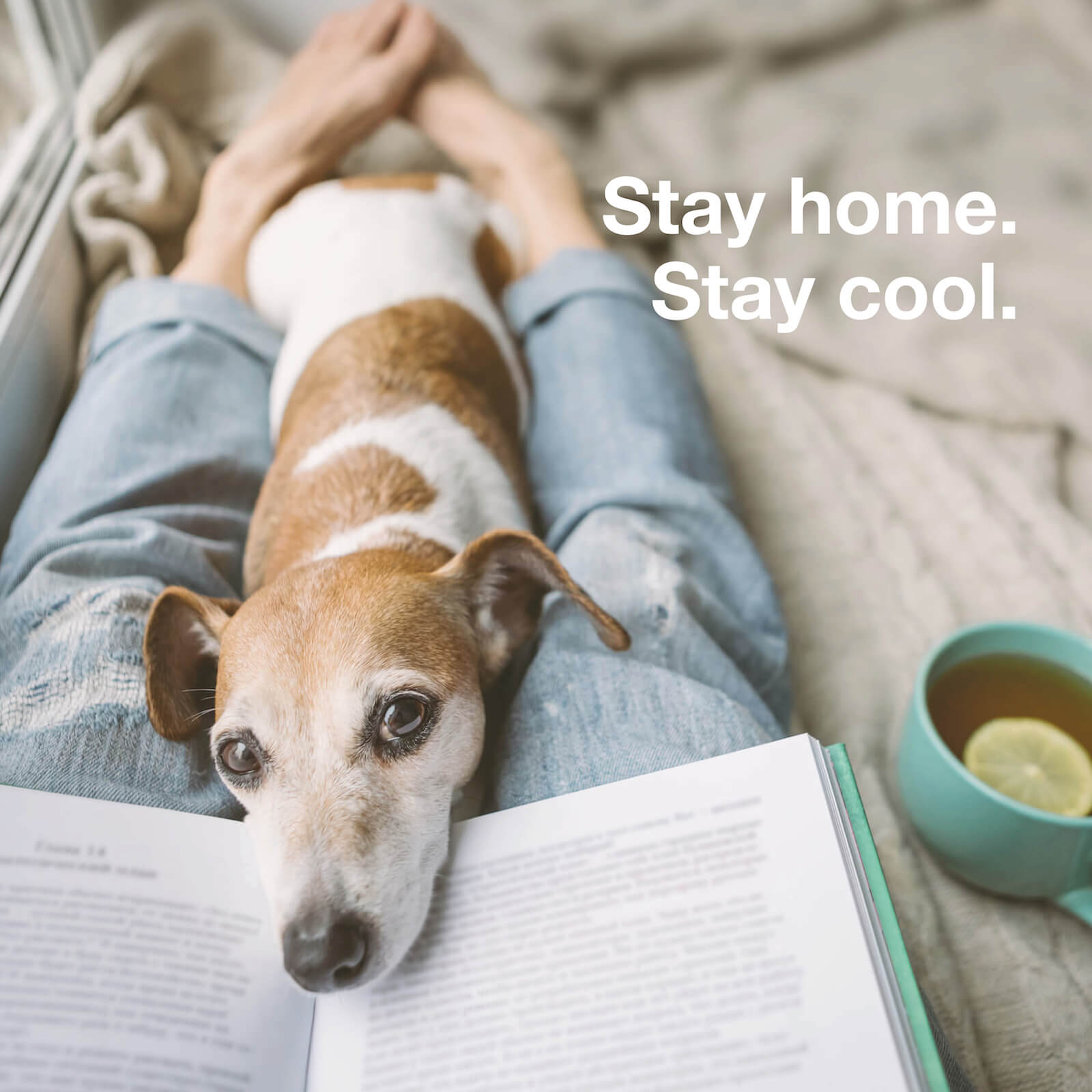 Stay home. Stay cool. #wirbleibenzuhause